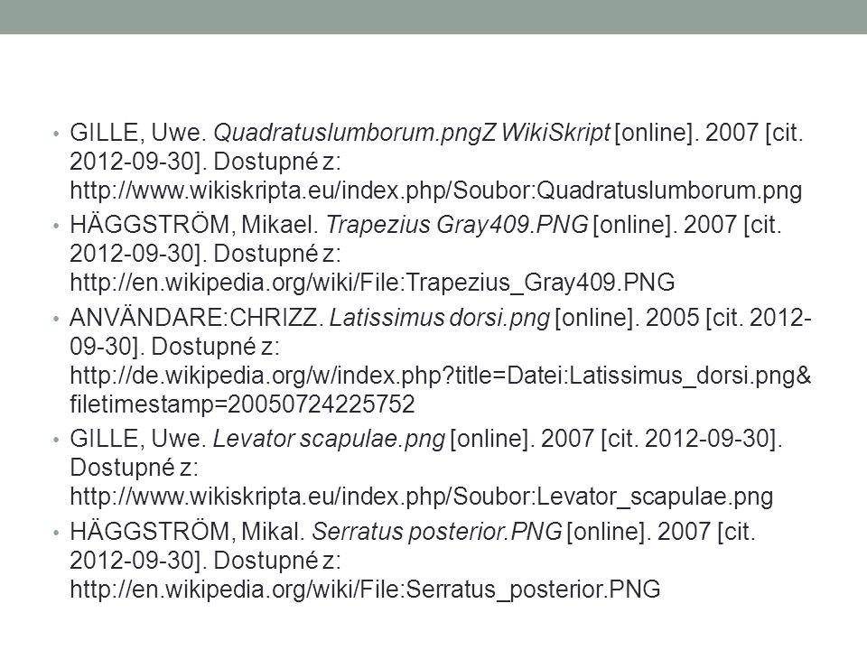 GILLE, Uwe. Quadratuslumborum. pngZ WikiSkript [online]. 2007 [cit